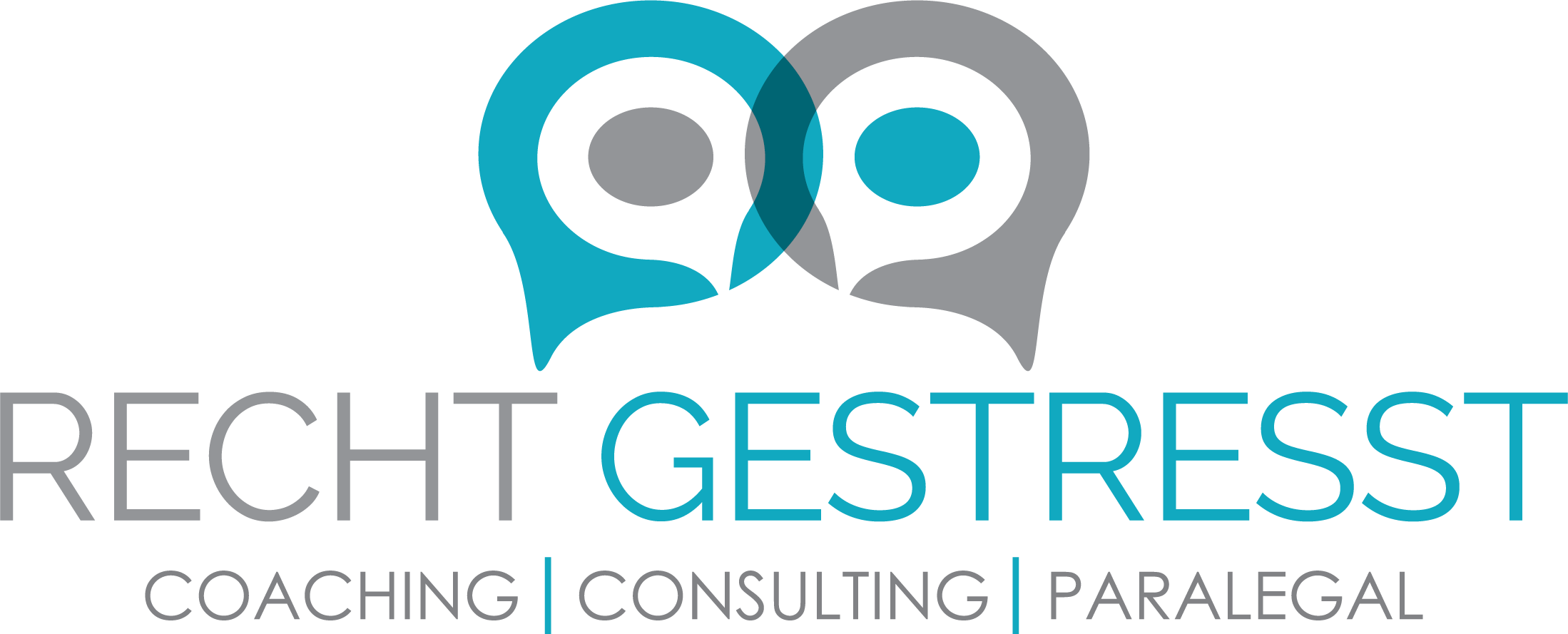 Recht Gestresst Coaching Consulting Paralegal Dassa Smith